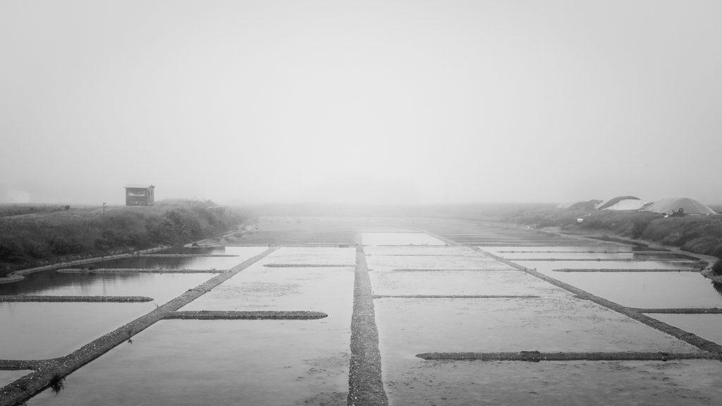 brume matinale sur les marais salants vendéens