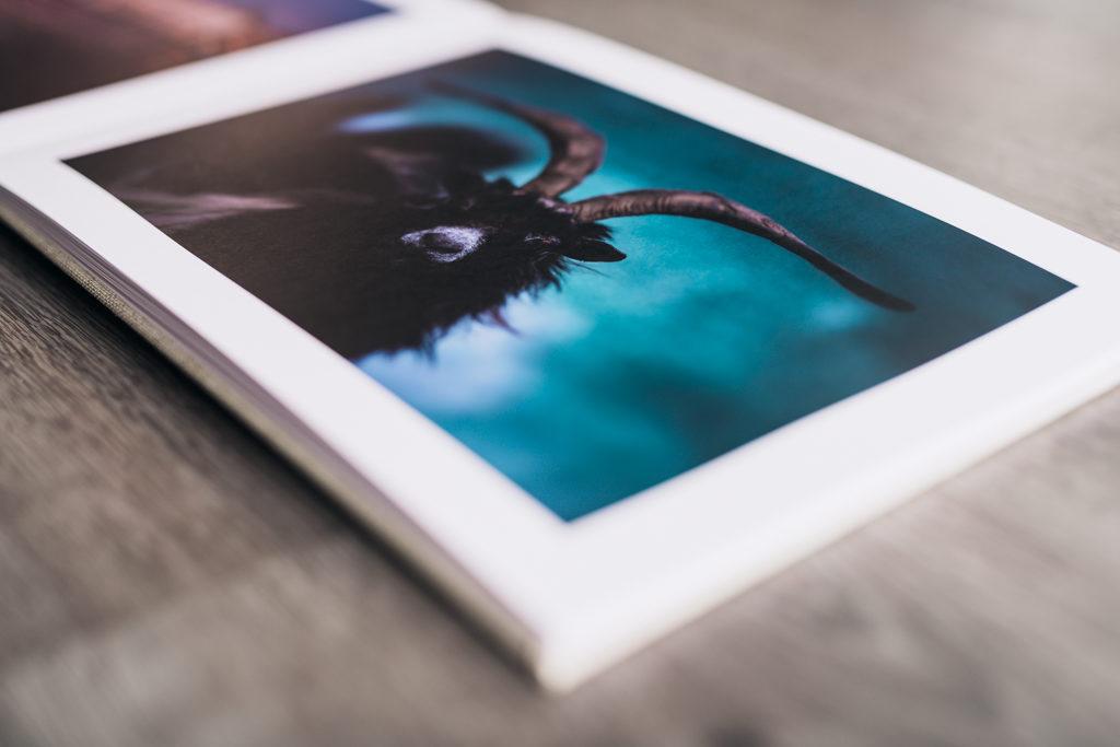 Exemple de rendu couleur sur une photo aux teintes bleutées