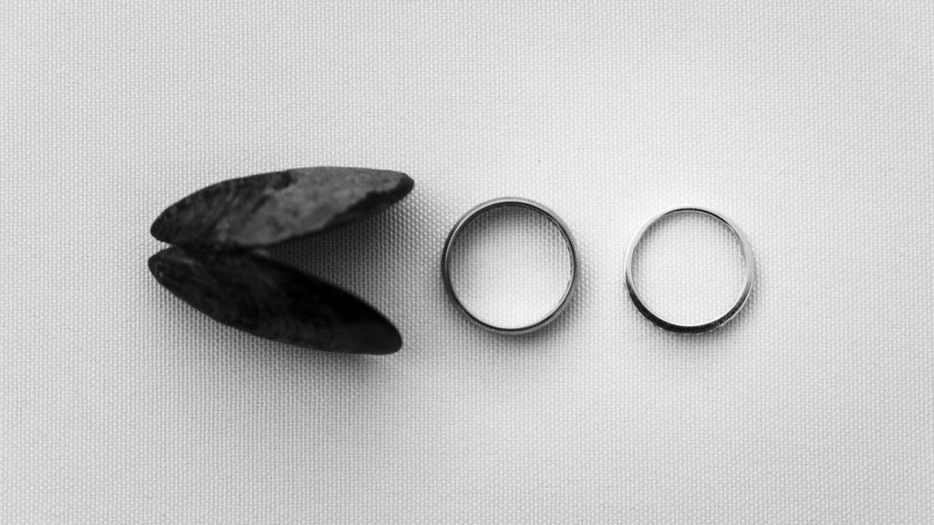 alliances de mariage sur une table avec une moule