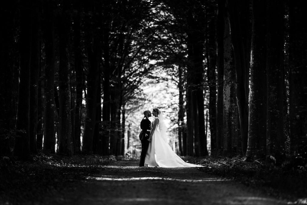photo de mariage dans un chemin forestier