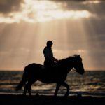 Séance photo équestre sur une plage normande