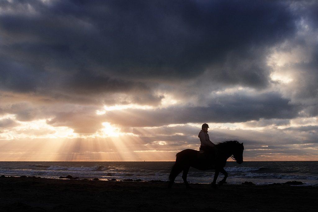 Photo de la silhouette d'une jument et sa cavalière sur une plage, les rayons du soleil éclairent la mer à l'arrière-plan