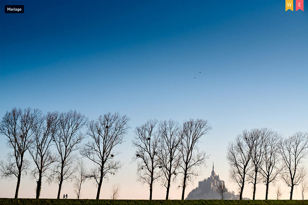 Photo d'un couple marchant au loin entre les arbres, avec le mont saint michel à l'arrière plan, récompensée par un choix éditeur et un badge photo de la semaine sur mywed